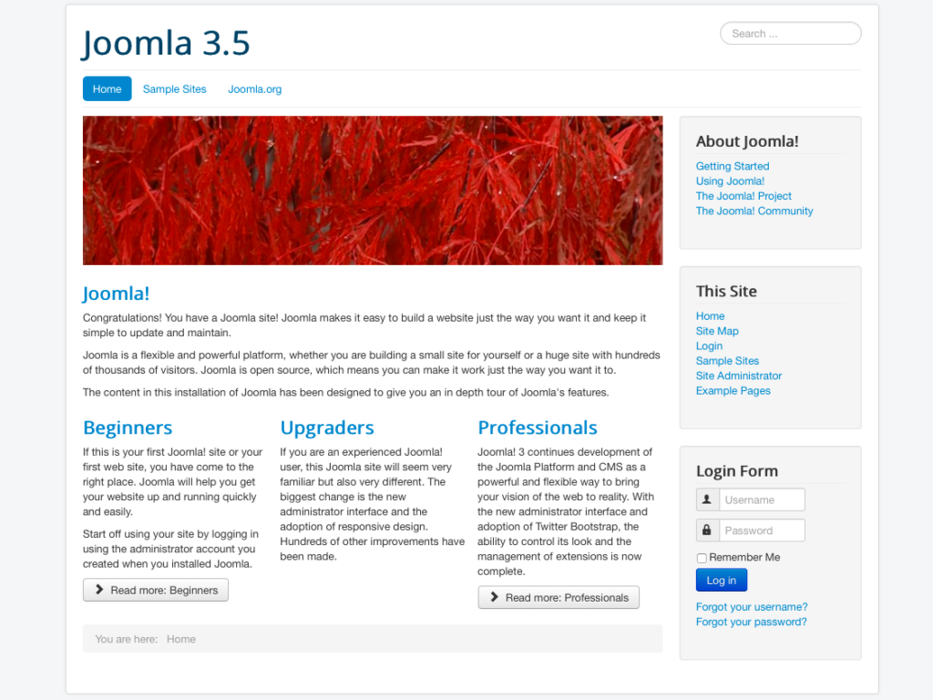 Figure 9: Learn Joomla data
